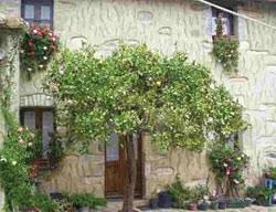 Casa Rural Degli Aranci