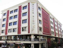 Hotel Blackbird