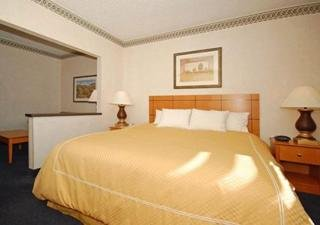 Room photo 18 from hotel Comfort Suites - Las Cruces