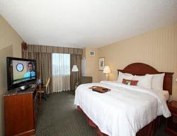 Hotel Hampton Inn Jfk Airport