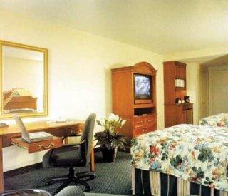 Hotel Hilton Garden Inn Scottsdale Old Town Scottsdale Scottsdale