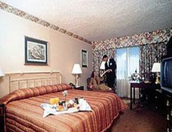 Hotel Holiday Inn Jfk Airport